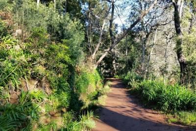 Full-Day Tour: Douro Valley Trip from Porto
