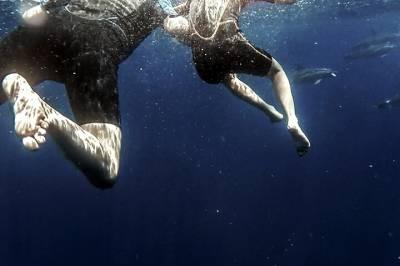 Street Art Tour of Lisbon