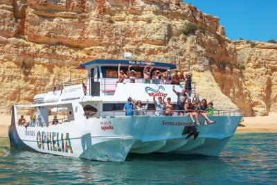 Dolphin Watching from Cabanas de Tavira