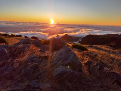 Adventureland Madeira 4x4 Tours - Sunrise (Private Tour)