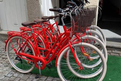 Bicycle Rent All Day + GPS Route, Porto
