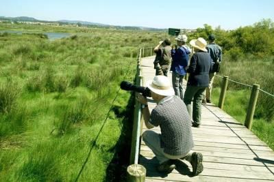 From Faro: Private Sailing Trip in Ria Formosa