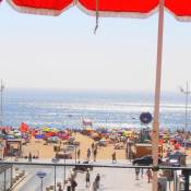 Solar dos Carvalhos - Apartamentos de Turismo