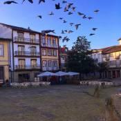 Santiago 31 Hostel