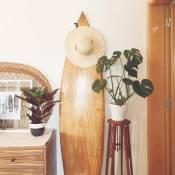 Endless Summer Surf House