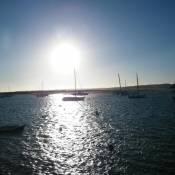 Amoreira Mar