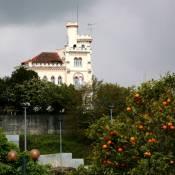 Luso Villa
