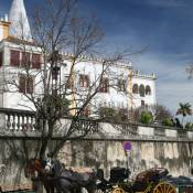 Horse and Carriage - Sintra