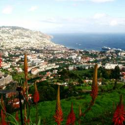 View over Funchal - Madeira