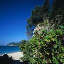 Arrabida Beach - Sesimbra