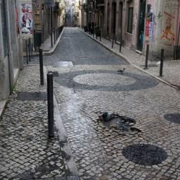 Bairro Alto Pigeon Bath