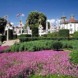 Flowers in Barcelos