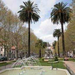 Avenida Sa Da Bandeira - Coimbra