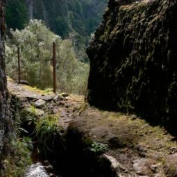 Levada - Madeira