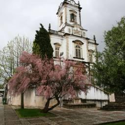 Igreja Matriz - Lousa