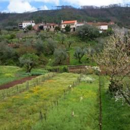 Rural Beira