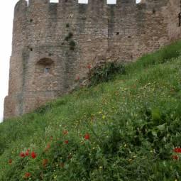 Torres Vedras Castle
