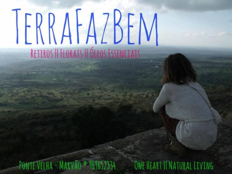TerraFazBem