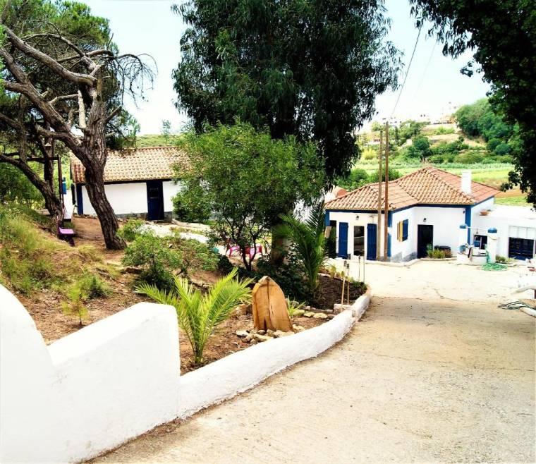 Blue Monkey Surf Village