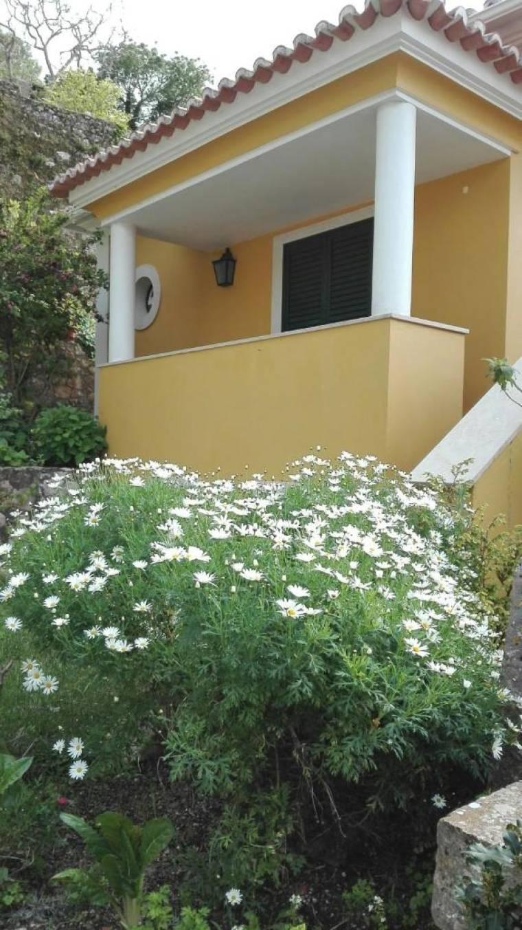 Suite Natura - Center