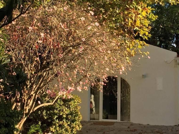 Casa do Hibisco