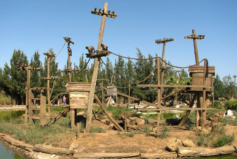 Monkey Island - Lagos Zoo