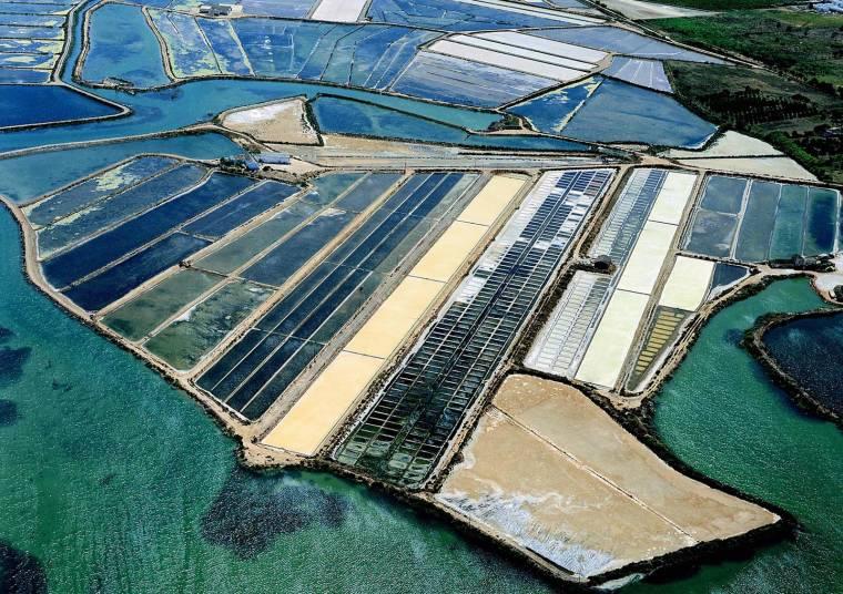 Ria Formosa saltpans