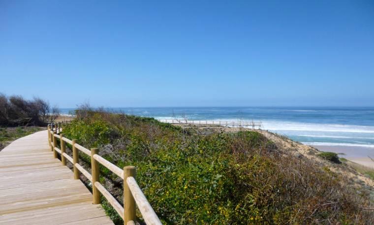 Praia do Malhão boardwalk through dunes