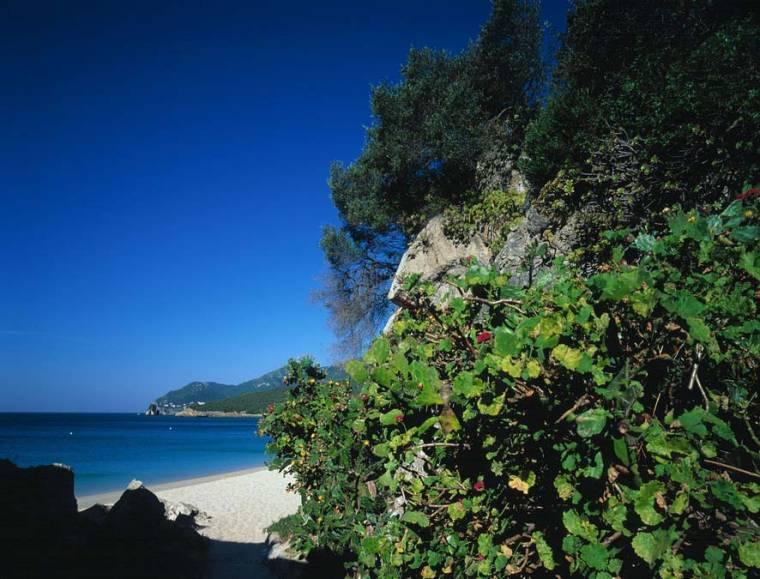 Arrabida Beach