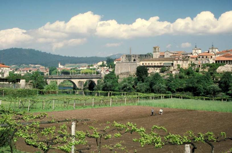 Barcelos across the Vinyards